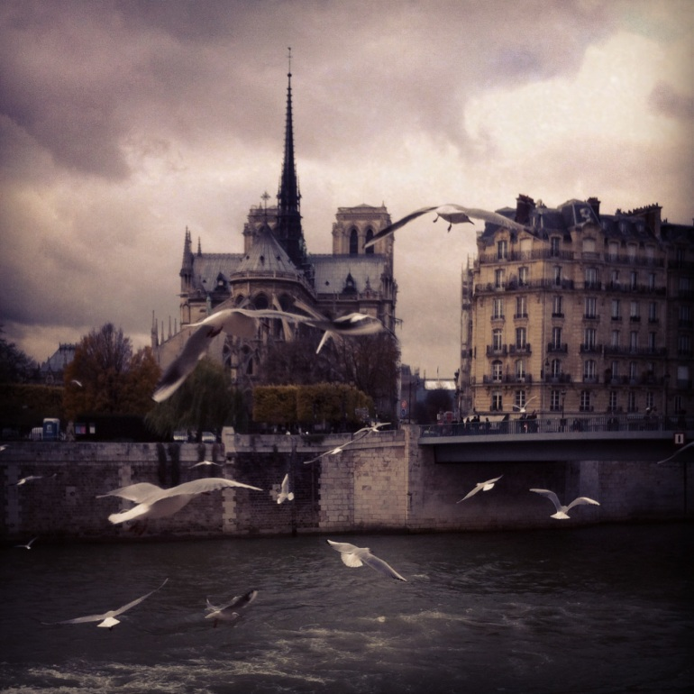 A chance photo I took on a rainy day in Paris, looking at the Notre Dame Cathedral from behind.